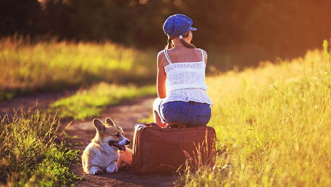 reisen mit hund_